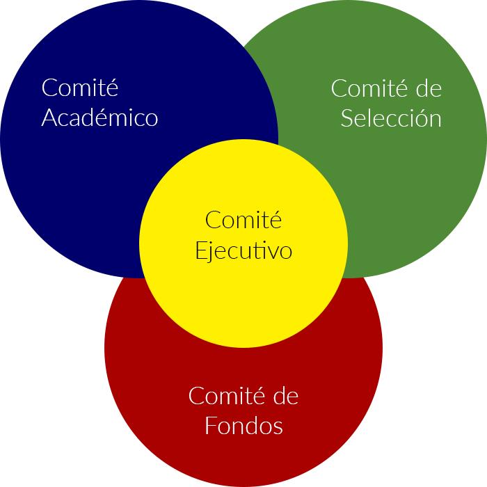 Estructura Organizacional ReGeneC